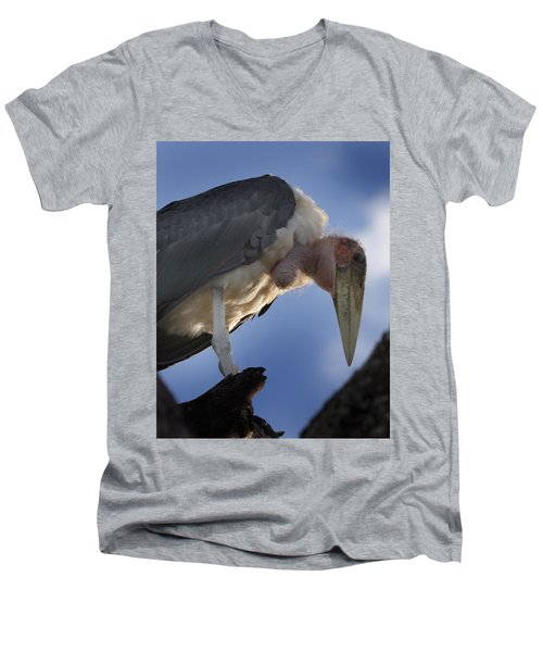 Maribou Stork Men's V-Neck T-Shirt