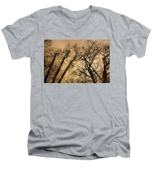 Quarrel Men's V-Neck T-Shirt