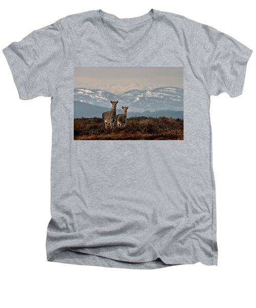 Sika Deer Men's V-Neck T-Shirt