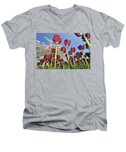 Men's V-Neck T-Shirt featuring the photograph 090416p029 by Arterra Picture Library