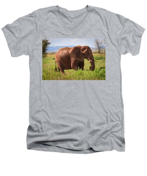 African Desert Elephant Men's V-Neck T-Shirt