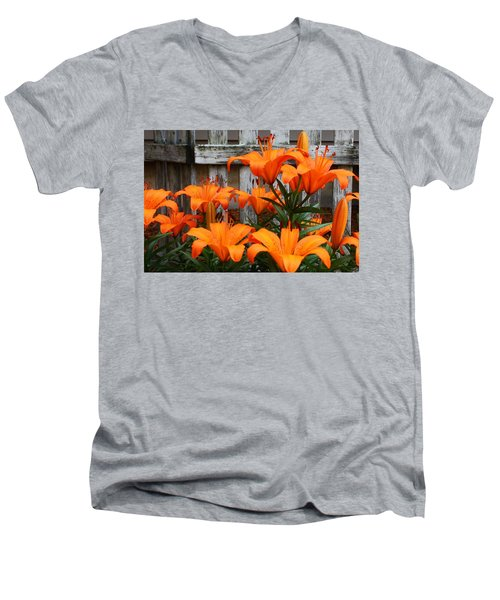 Afternoon Delight Men's V-Neck T-Shirt by Bruce Bley