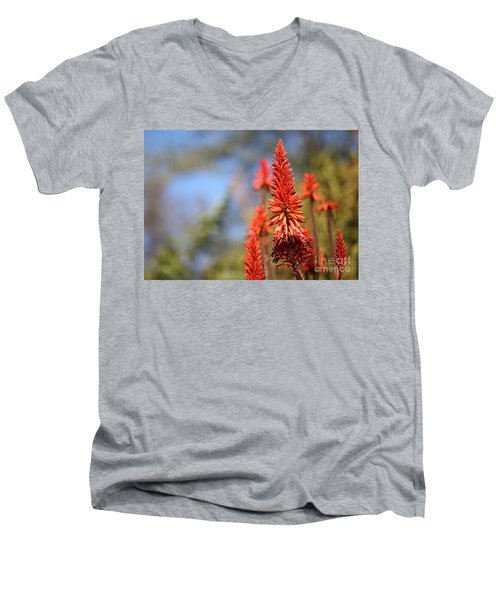 Aloe Succotrina  Men's V-Neck T-Shirt