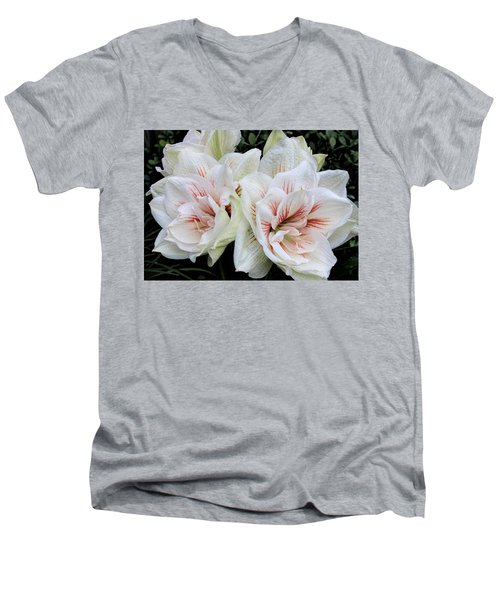 Amaryllis Cluster Men's V-Neck T-Shirt