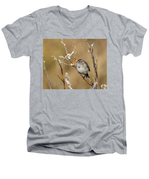 American Tree Sparrow Men's V-Neck T-Shirt