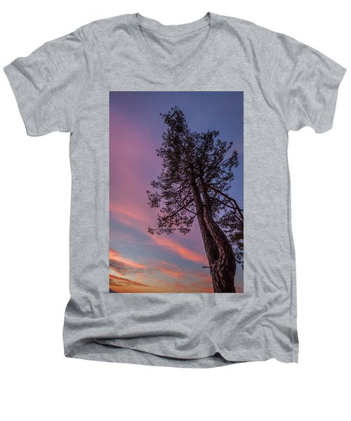Men's V-Neck T-Shirt featuring the photograph Awakening by Davorin Mance