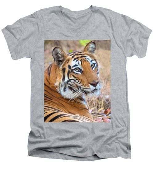 Bandhavgarh Tigeress Men's V-Neck T-Shirt