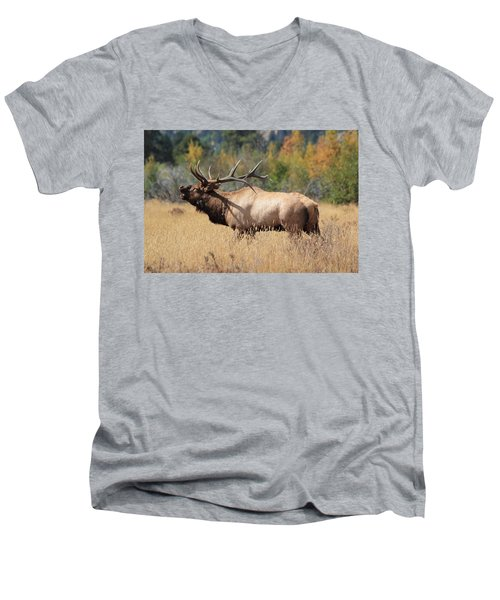 Bugling Bull Men's V-Neck T-Shirt