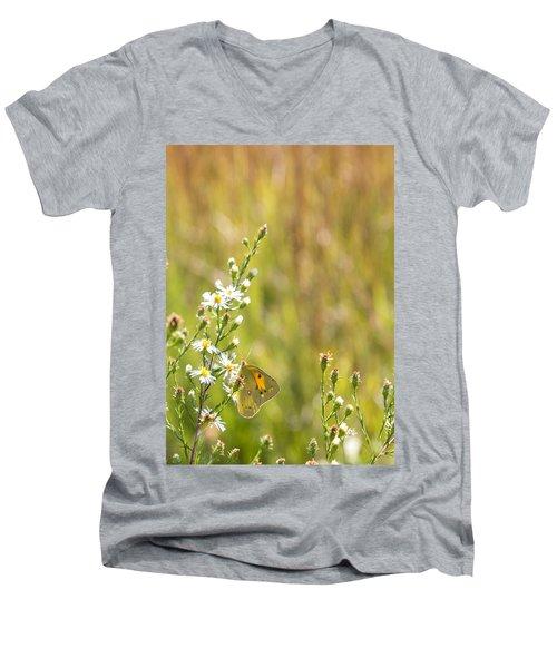 Butterfly In A Field Of Flowers Men's V-Neck T-Shirt