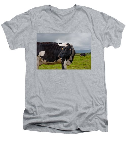 Cow Wearing Cowbell  Men's V-Neck T-Shirt