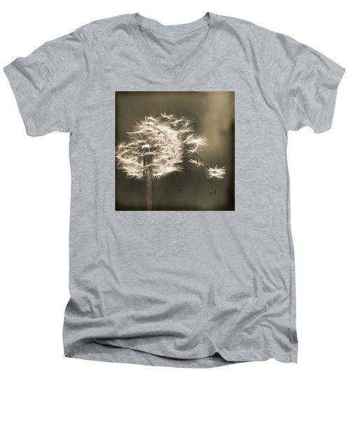 Dandelion Men's V-Neck T-Shirt by Yulia Kazansky