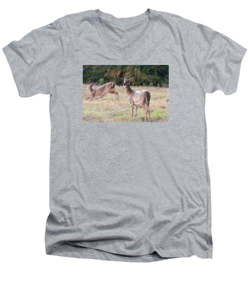 Deer At Paynes Prairie Men's V-Neck T-Shirt