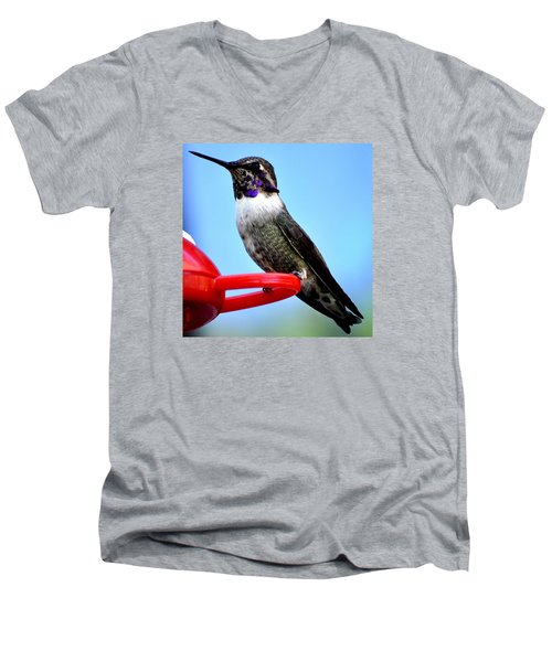 Men's V-Neck T-Shirt featuring the photograph Male Anna On Perch by Jay Milo