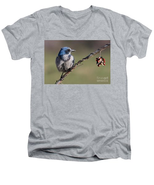 Florida Scrub Jay Men's V-Neck T-Shirt