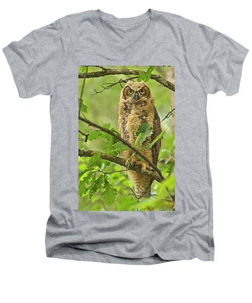 Forest King Men's V-Neck T-Shirt