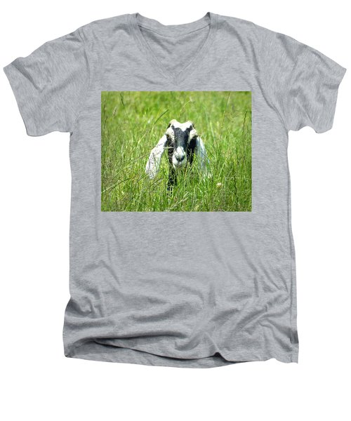 Goat Men's V-Neck T-Shirt