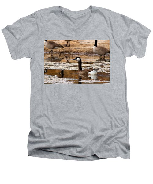 Goose Pond Men's V-Neck T-Shirt
