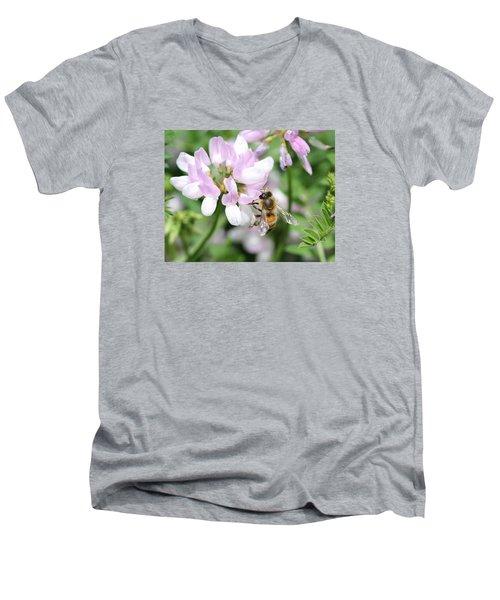 Honeybee On Crown Vetch Men's V-Neck T-Shirt by Lucinda VanVleck