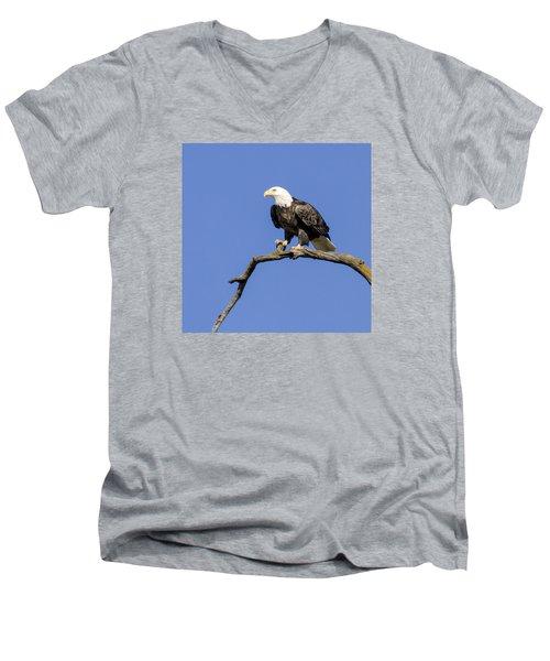 King Of The Sky Men's V-Neck T-Shirt by David Lester