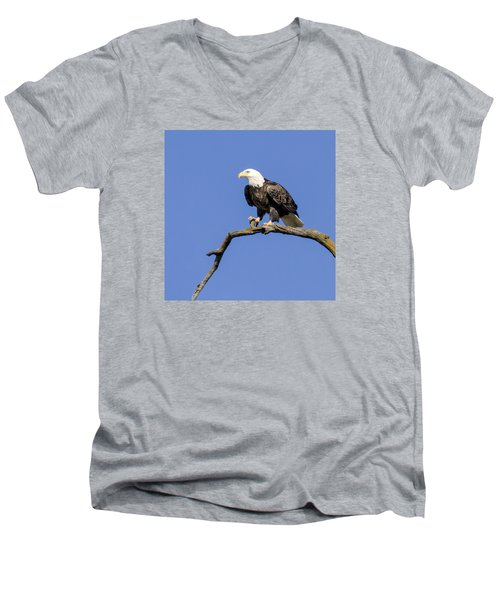 King Of The Sky Men's V-Neck T-Shirt