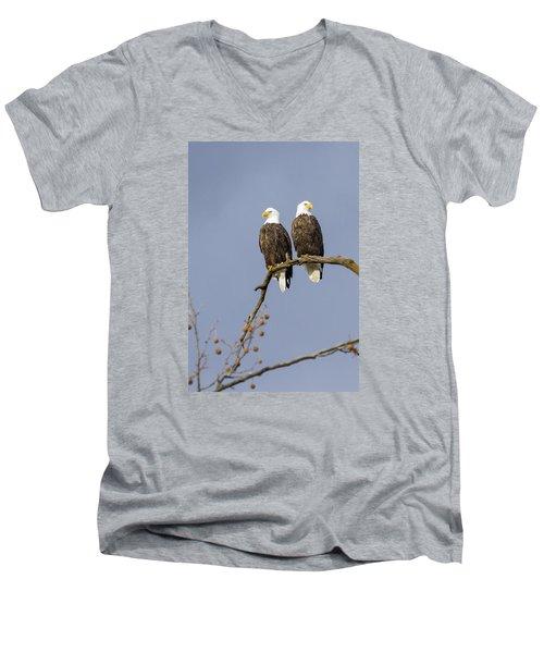 Majestic Beauty 5 Men's V-Neck T-Shirt by David Lester