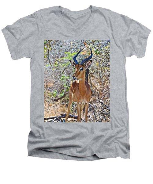 Male Impala In Kruger National Park-south Africa   Men's V-Neck T-Shirt