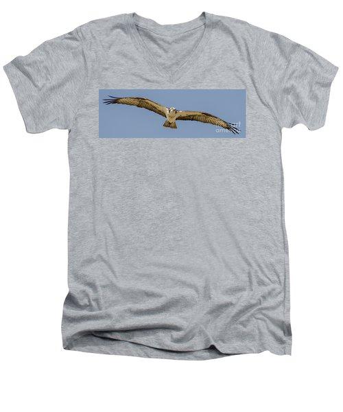 Osprey In Flight Men's V-Neck T-Shirt by Dale Powell