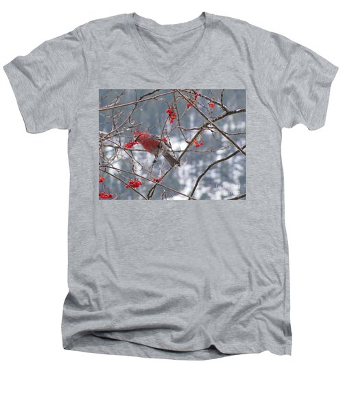 Pine Grosbeak And Mountain Ash Men's V-Neck T-Shirt