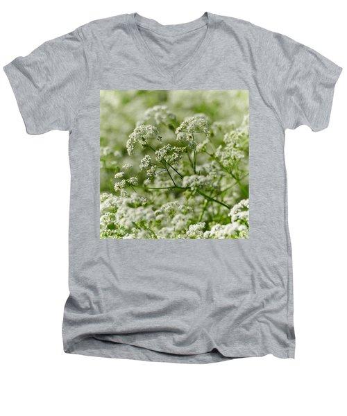 Queen Annes Lace Men's V-Neck T-Shirt