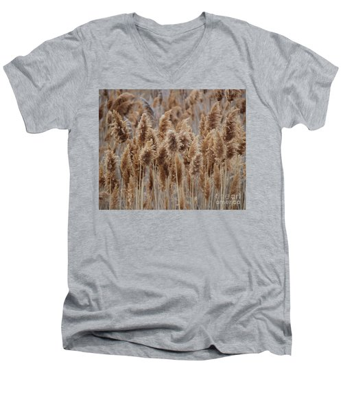 Wind Blown Redish Brown Plants Men's V-Neck T-Shirt