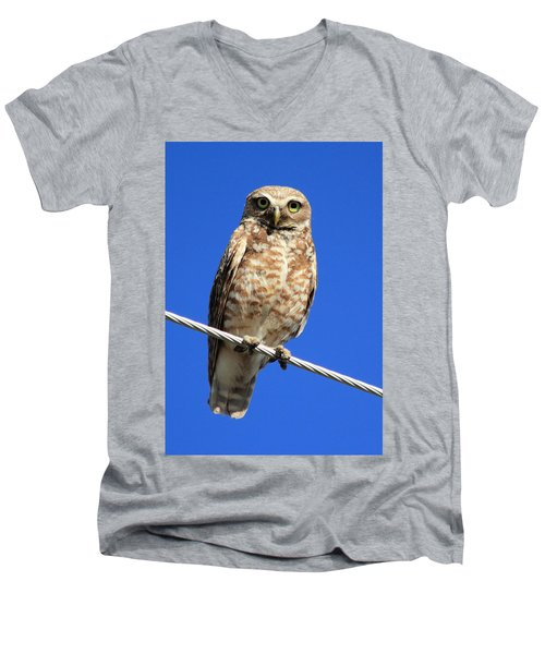 Stare Down Men's V-Neck T-Shirt