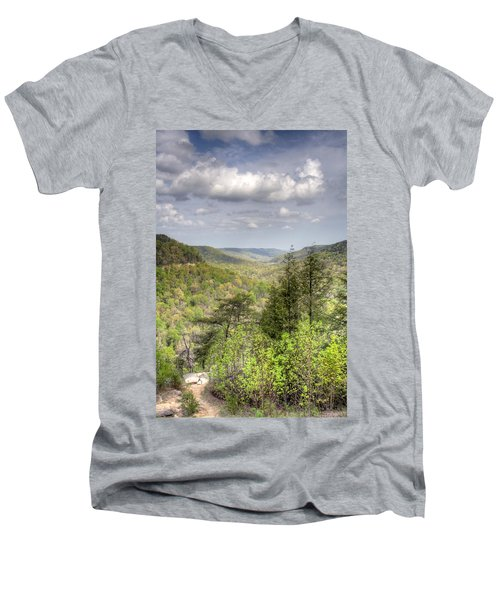 The Valley II Men's V-Neck T-Shirt by David Troxel