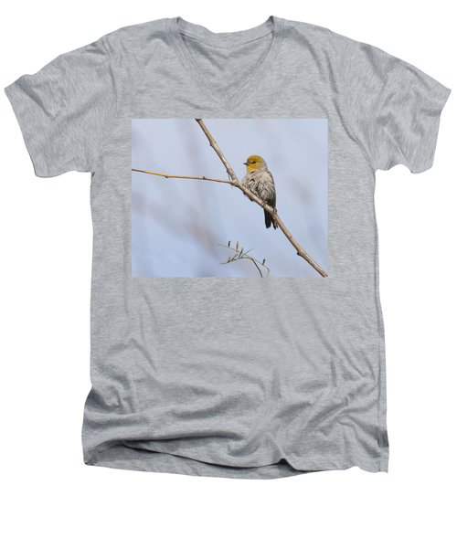 Verdin Men's V-Neck T-Shirt by Tam Ryan