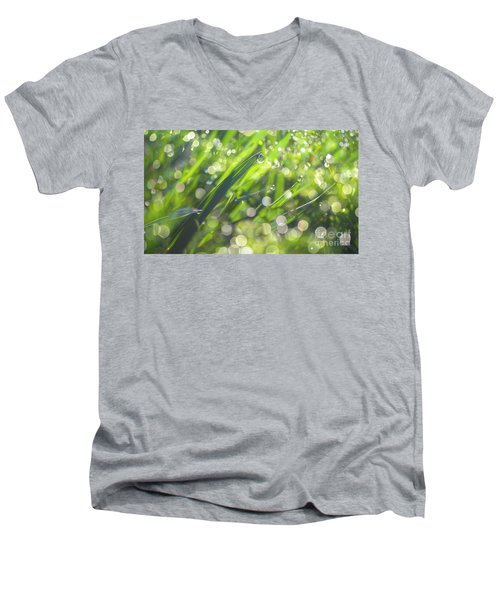 Men's V-Neck T-Shirt featuring the photograph Where The Fairies Are by Rima Biswas