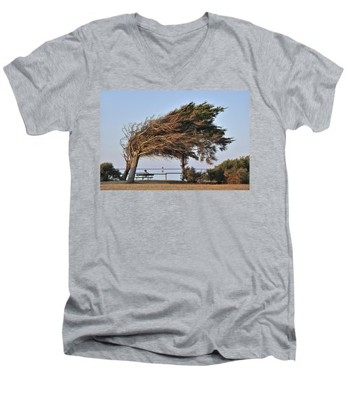 Men's V-Neck T-Shirt featuring the photograph 120920p152 by Arterra Picture Library