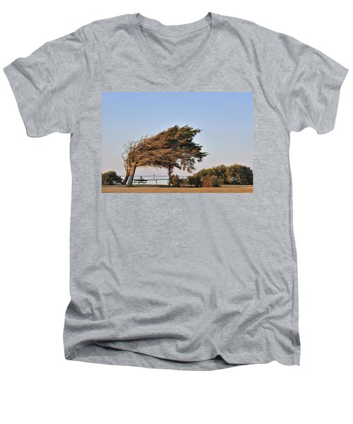 Men's V-Neck T-Shirt featuring the photograph 120920p153 by Arterra Picture Library