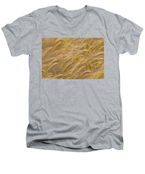 Men's V-Neck T-Shirt featuring the photograph 130109p155 by Arterra Picture Library