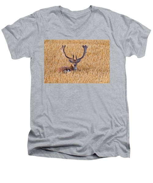 Men's V-Neck T-Shirt featuring the photograph 130201p293 by Arterra Picture Library