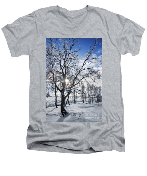 Men's V-Neck T-Shirt featuring the photograph 130201p341 by Arterra Picture Library