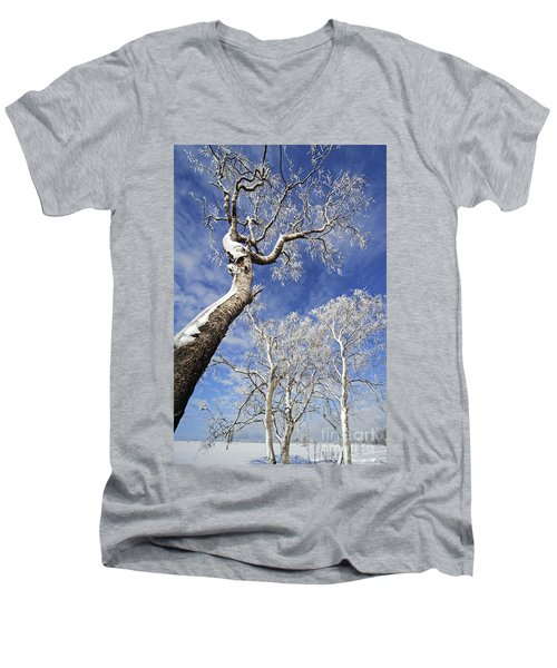 Men's V-Neck T-Shirt featuring the photograph 130201p343 by Arterra Picture Library