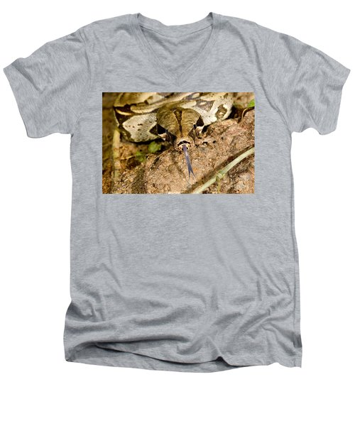 Boa Constrictor Men's V-Neck T-Shirt by Gregory G. Dimijian, M.D.