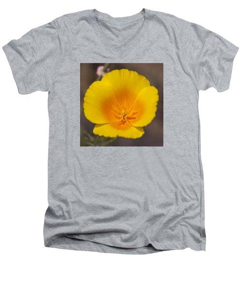 California Sunshine Men's V-Neck T-Shirt