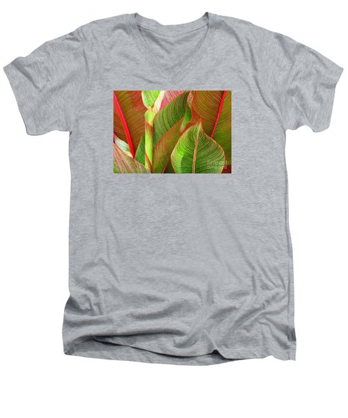 Men's V-Neck T-Shirt featuring the photograph Colorful Leaves by Ranjini Kandasamy