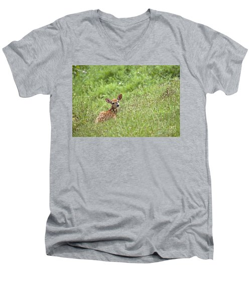 Fawn Men's V-Neck T-Shirt by Jeannette Hunt