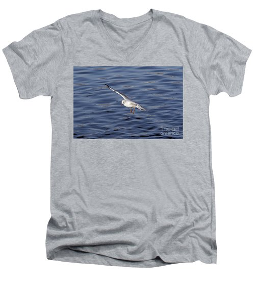 Flying Gull Men's V-Neck T-Shirt by Michal Boubin