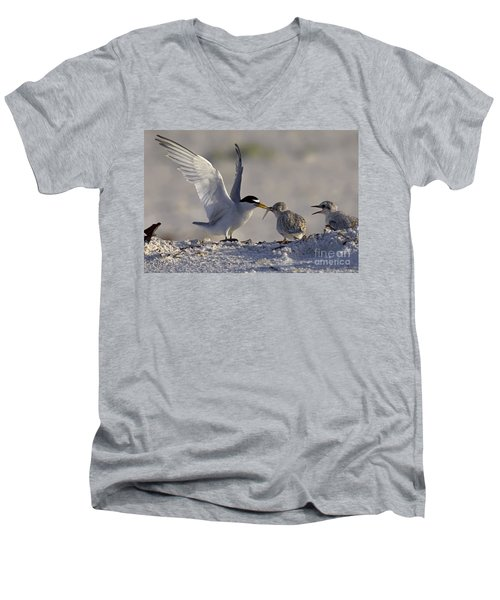 Least Tern Feeding It's Young Men's V-Neck T-Shirt