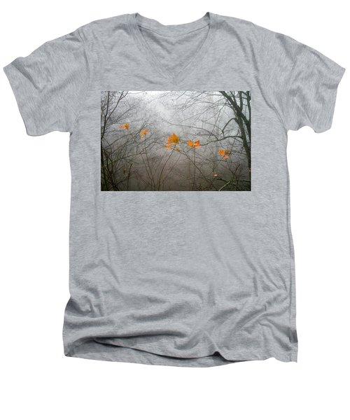 Mountain Fog Men's V-Neck T-Shirt