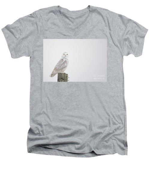 Observant Men's V-Neck T-Shirt by Cheryl Baxter