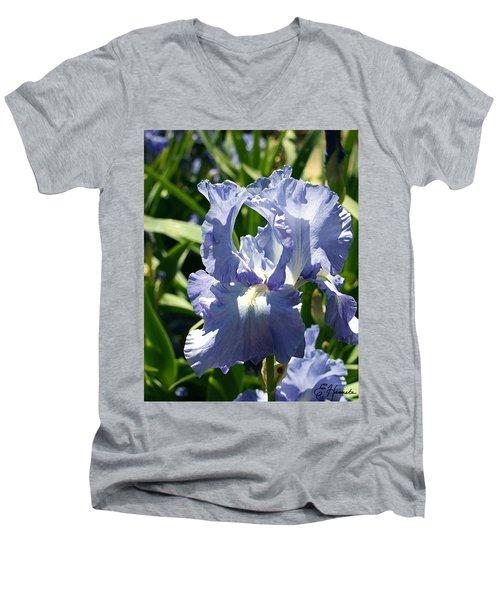 Purple Bearded Iris Men's V-Neck T-Shirt