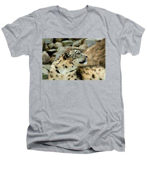 Snow Leopard Men's V-Neck T-Shirt by Daniel Precht